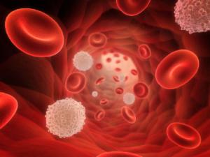 Активирует размножение эритроцитов и тромбоцитов