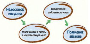 Процесс развития котоацидоза