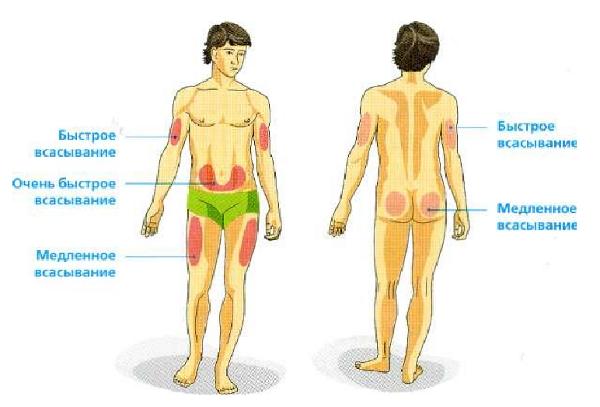 Быстрее всего инсулин всасывается в организм при введении в брюшной области