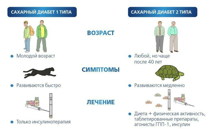 Сахарный диабет 1 и 2 типа