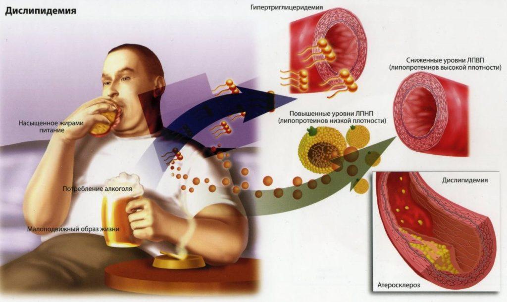 Содержание глюкозы в крови