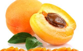Польза и вред кураги при сахарном диабете 2 типа
