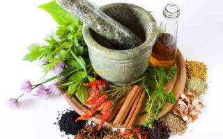 Какие травы эффективны при лечении сахарного диабета 2-го типа