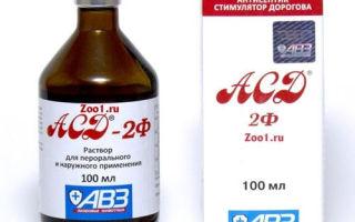 Правила применения фракции АСД 2 при сахарном диабете 2-го типа
