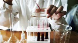 Если сахар в крови 17, что делать и стоит ли немедленно обратиться к врачу?