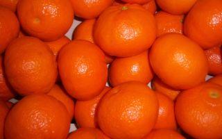Целебные свойства мандарин при сахарном диабете