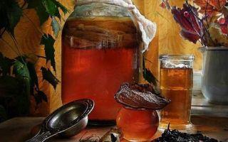 Какая польза напитка из чайного гриба при сахарном диабете 2 типа?
