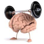 Стимулирует мозговую и мышечную активность