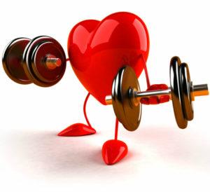 Укрепляет сердечную мышцу и сосуды