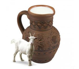 Продукт из молока козы