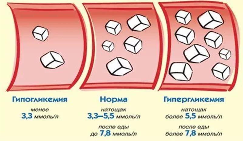 Могут ли продукты снизить сахар в крови