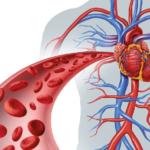Нарушения в системе кроветворения