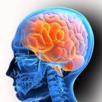 Нормализация функций нервной системы