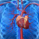 Проблемы в функционировании сердца