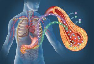 Сахарный диабет и поджелудочная железа