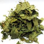 Сушеные листья крапивы