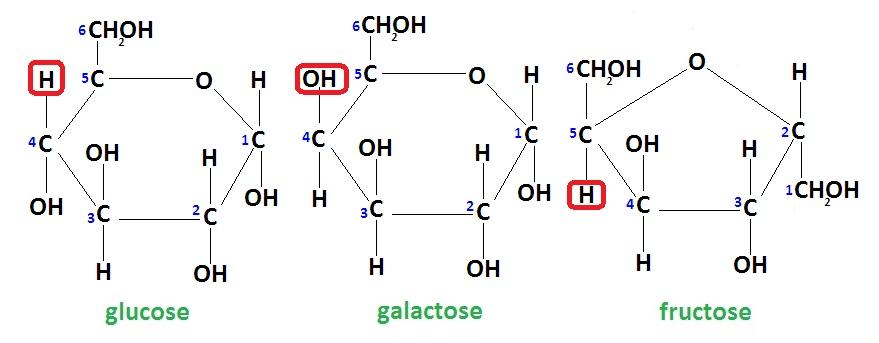 Галактоза