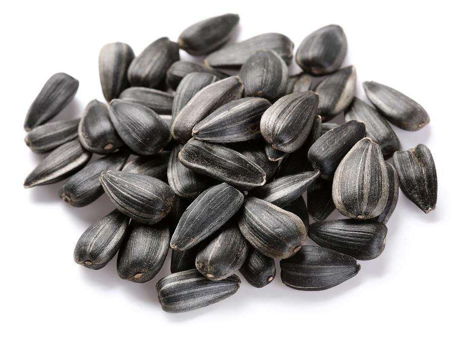 Можно ли при сахарном диабете есть семечки подсолнуха и тыквы?