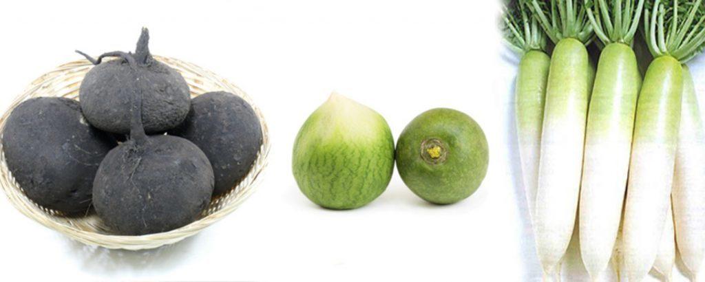 Какую редьку покупать: черную или зеленую?